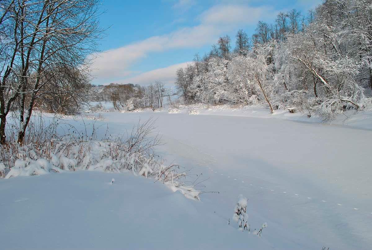 сдержанного европейского зимний день на реке вагай фото мере своего взросления